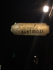 Szimpla Kert - Ruin Bar Pub Tour in Budapest, Hungary