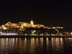 Budapest Castle at night from the Danube River