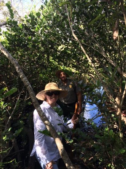 tree-island-hiking-florida-everglades