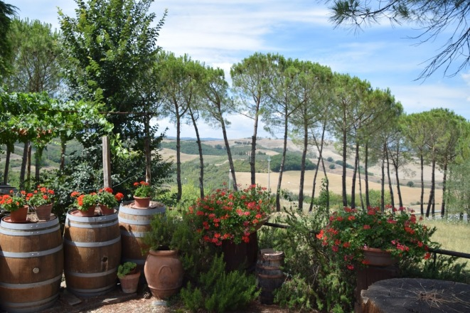 Tuscany_Italy_wine_tour_abbadia_ardenga_view