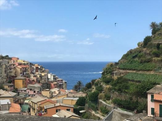 Cinque_terre_italy_manarola_trail_view