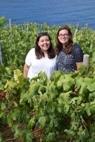 Cinque_terre_italy_manarola_vineyard
