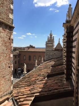 Siena_Italy_Duomo_porto_del_cielo_roof